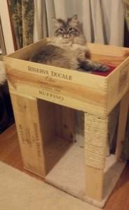 Cama para gatos en alto