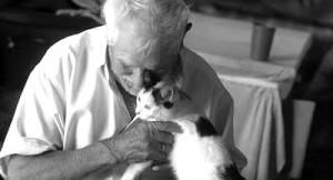 gatos y ancianos